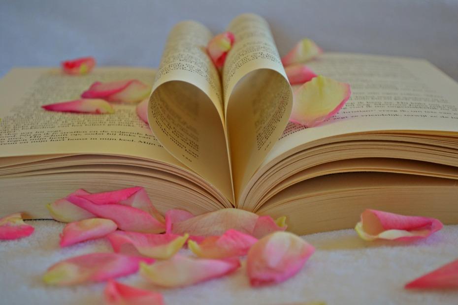 book-1169437_1920